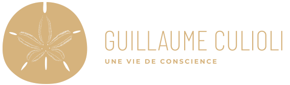 Guillaume Culioli